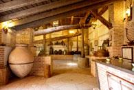 Museo del vino y del aceite